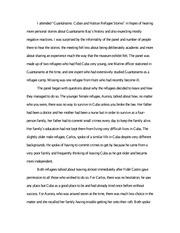 Haiti essay