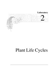 lab2_plant life cycles