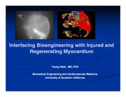 Hsiai_BME-tissue engineering-11-17-11