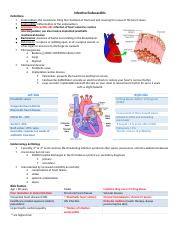 Infective Endocarditis.docx