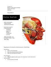 Lecture 13 - Notes - October 29, 2013.docx