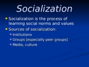 Lecture 4: Socialization and Stratification