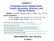 LEC5_ProteinSecondaryStructure_13