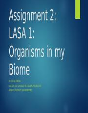 Assignment 2 powerpoint