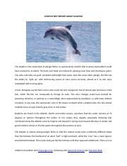 CONTOH-TEXT-REPORT-ABOUT-DOLPHIN.docx