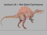 Lecture 14 - the Giant Meat Eaters.pdf