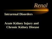 intrarenal disorders-patho