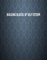Building blocks of Self Esteem CH2.2