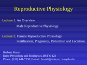 Lecture 22 Reproductive Physiology I