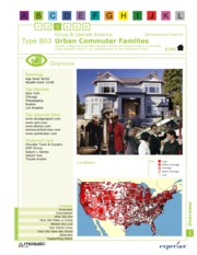 B03 - Urban Commuter Families