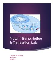 Protein transcription and translation without table.docx