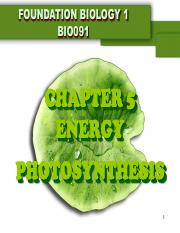 CHAPTER 5 PHOTOSYNTHESIS student version(1).pdf