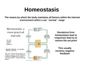 Animals - Homeostasis and Feedback
