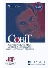 COBIT synthese