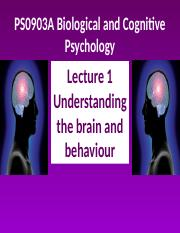 Biological and Cognitive Psychology - Lecture 1.ppt
