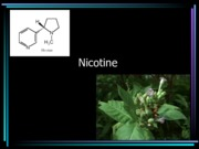 Nicotine Lecture