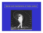 Mechanisms_of_Motor_Control