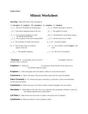 Mitosis Worksheet Key Mitosis Worksheet Name Answer Key Matching