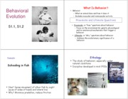 10 Behavioral Evolution
