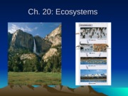 Chapter 20 Lecture Ecology