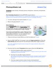 PhotosynthesisLabSE_Key (1).pdf - Photosynthesis Lab ...