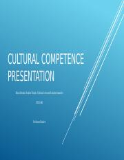 Cultural Competence Presentation for Team E Week 4 project (1).pptx