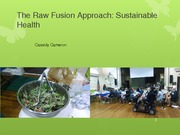 The Raw Fusion Approach Assignment