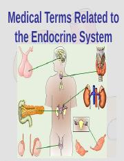 Chapter%2013%20The%20Endocrine%20System%207th%20ed.ppt