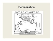 Lecture Slides 4 - Sociologists
