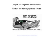 lecture13 Memory Systems Part II