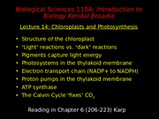 Lecture 14 (Sept 24) 2012