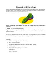 osmosis in celery lab new.pdf