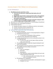 Anatomy chapter 3 The Cellular Level of Organization.docx