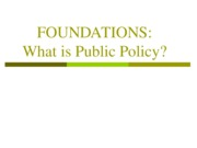 Jan 17 - What is Public Policy Spring 2008