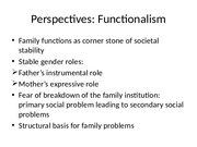 Family perspectives and problems