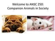 Course Intro and Human Animal Bond