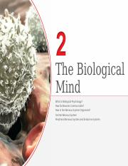 chapter 2 The BiologicalMind(1)