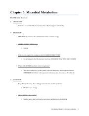 Chapter 5 - Microbial Metabolism.docx
