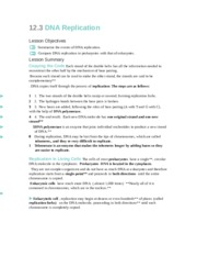 29 123 Dna Replication Worksheet Answers - Worksheet ...