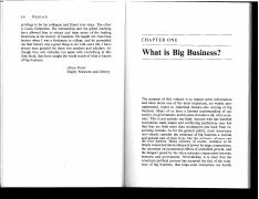what is big business.pdf