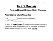 Price and Output Decisions Under Monopoly