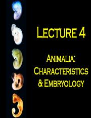 BIOL210_Lecture_4_Embryology