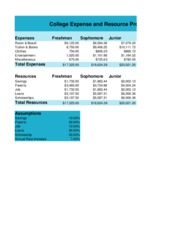Excel Project Shenita Book