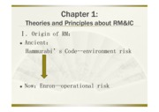 risk management and internal control 3