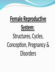 Female Reproductive Structures and Functions- NEW STD.ppt