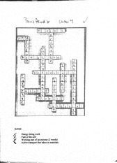 Cross word Puzzle for chapter 4