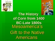 Adams, A - The History of Corn