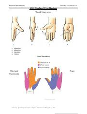 PRO 356 Hand and Wrist Handout