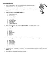 Human Body assignment.pdf