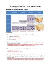 Histology_of_Epithelial_Tissue_Answers
